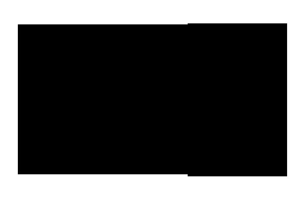 Grundriss Galerie- Dachgeschoss