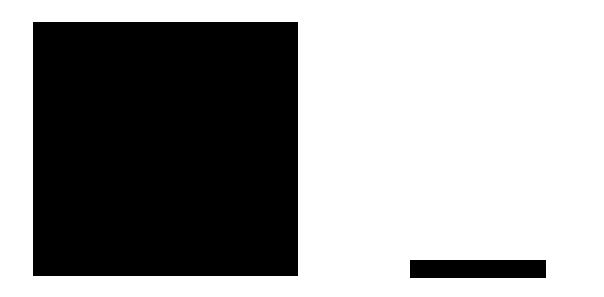 Querschnitt