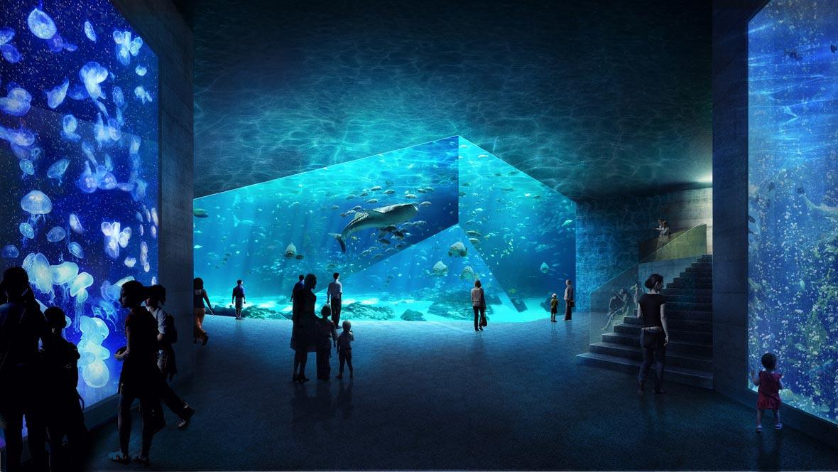 Architekten In Berlin deepblue aquarium pool architekten zürich