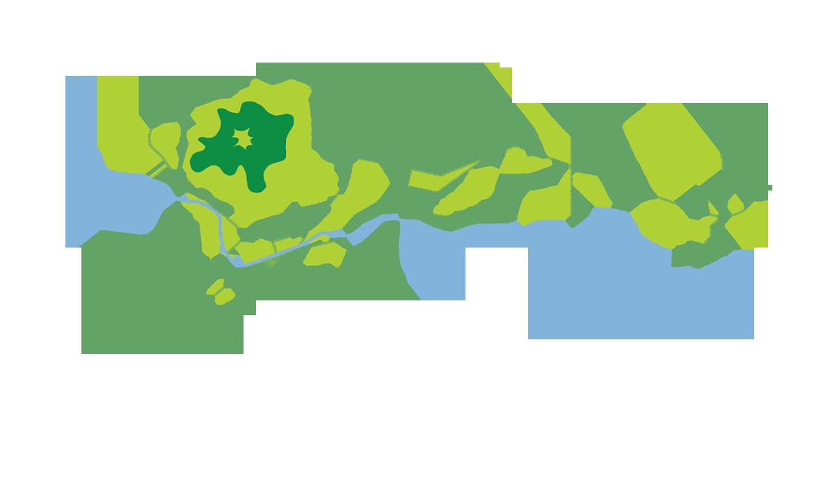 Frei- und Grünraumsystem