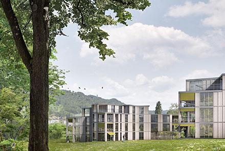 Mehrfamilienhäuser Rütistrasse 24-32